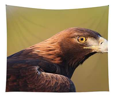 Golden Eagle 5151806 Tapestry