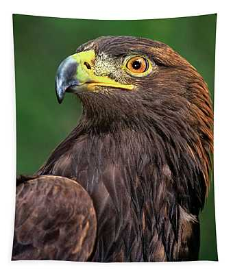Golden Eagle Portrait Threatened Species Wildlife Rescue Tapestry