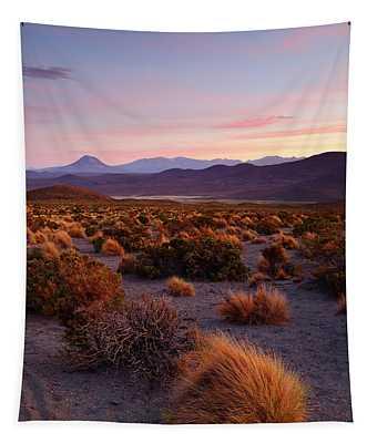 Golden Grasslands At Sunset Isluga National Park Chile Tapestry