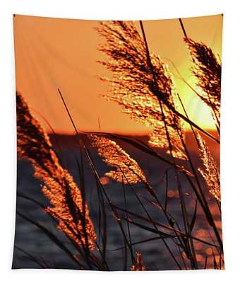 Tapestry featuring the photograph Golden Reeds by Patti Whitten