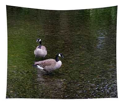 Goose Down Tapestry
