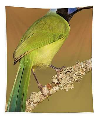Gorgeous Green Jay Tapestry