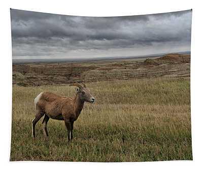 Grasslands South Dakota United States Of America Tapestry