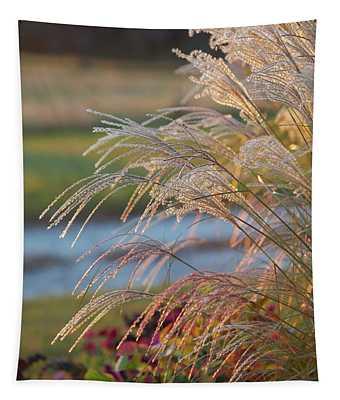 Gravel Road Grasses Tapestry