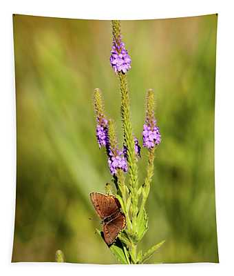 Gray Copper On Blazing Star Tapestry