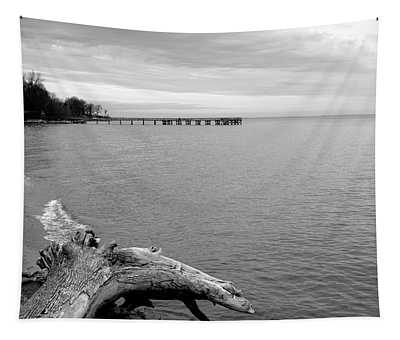 Gray Day On The Bay Tapestry