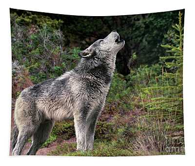Gray Wolf Howling Endangered Species Wildlife Rescue Tapestry