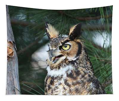 Great Horned Owl 5151801 Tapestry
