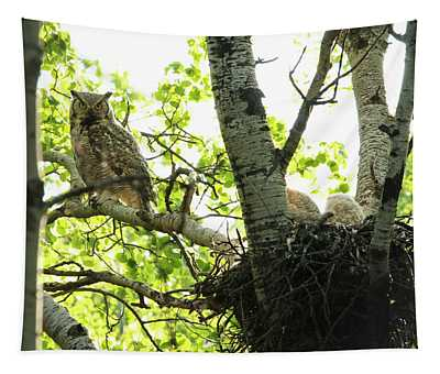 Great Horned Owl And Babies Tapestry
