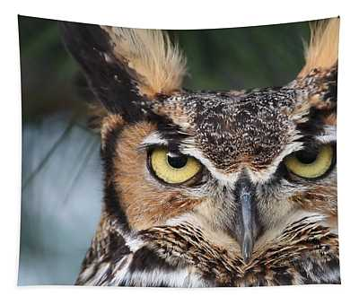 Great Horned Owl Eyes 51518 Tapestry