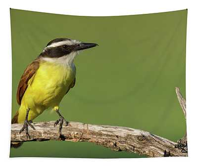 Great Kiskadee Tapestry