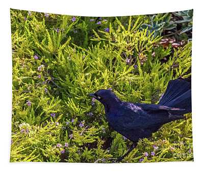 Great-tailed Grackle In Flowers Tapestry