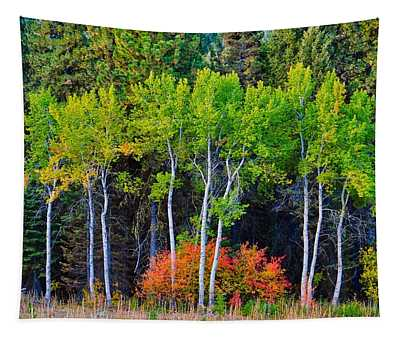 Green Aspens Red Bushes Tapestry