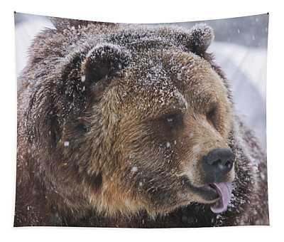 Grizzly Bear Tapestry