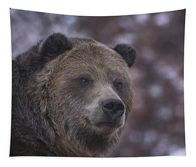 Grizzly  Tapestry