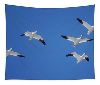 Group Of Geese Tapestry