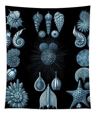 Tapestry featuring the digital art Haeckel Thalamphora by Joy McKenzie