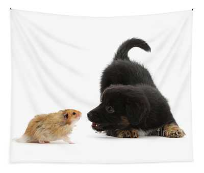 Hamster And Puppy Face-off Tapestry