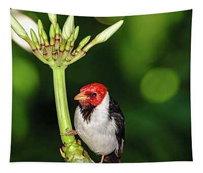 Happy Valentine's Day Bird Tapestry