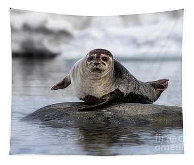 Harbour Seal On A Rock In Svalbard Tapestry