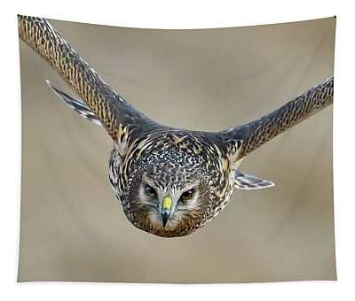 Harrier Eye-to-eye Tapestry