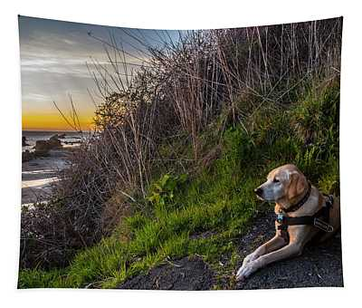 Harris Beach Sunset Tapestry