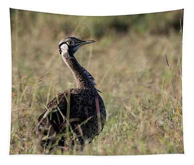 Black-bellied Bustard Tapestry