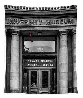 Harvard Museum Of Natural History Tapestry
