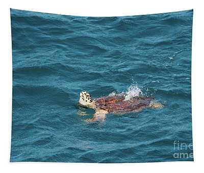 Hawksbill Sea Turtle Eretmochelys Imbricata G5 Tapestry