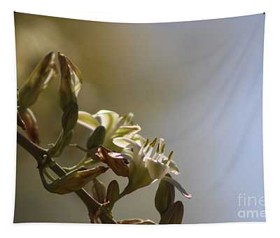 Hesperaloe Parviflora Flower In Sepia Tones Tapestry