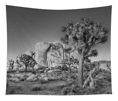 Hidden Valley Rock Tapestry