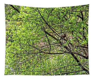 Hiding In Plain Sight Tapestry