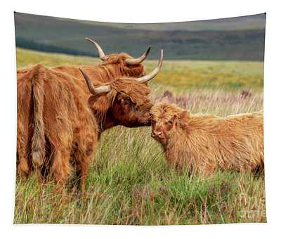 Highland Cow And Calf Tapestry