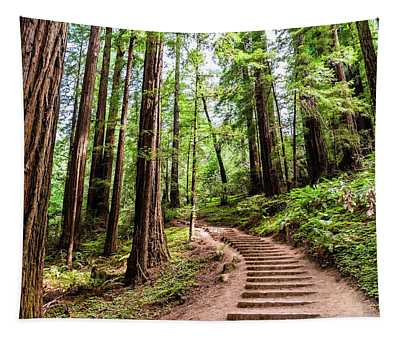 Hiking Trail Through Redwood Trees Tapestry