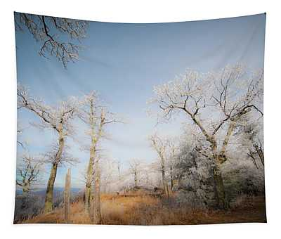Hilltop Hoarfrost Tapestry