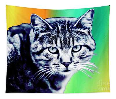 Hipster Cat From Istanbul Pop Art Tapestry