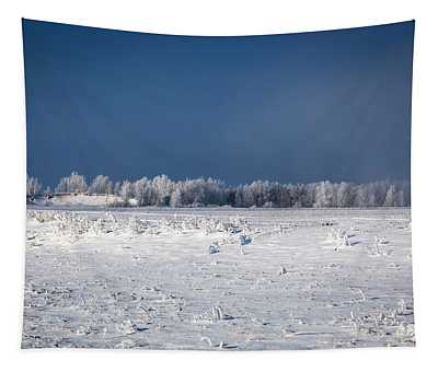 Hoar Frost At Bvg 2018-1 Tapestry