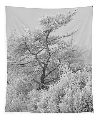 Hoar Frost At Bvg 2018-12 Bw Tapestry