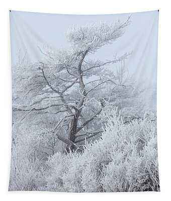 Hoar Frost At Bvg 2018-12 Tapestry