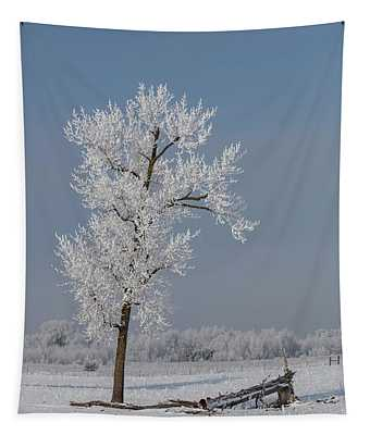 Hoar Frost At Bvg 2018-3 Tapestry