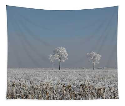 Hoar Frost At Bvg 2018-5 Tapestry