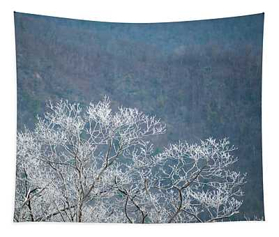 Hoarfrost Collects On Branches Tapestry
