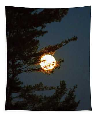 Tapestry featuring the photograph Hold The Moon by Patti Whitten