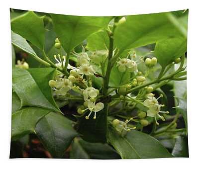 Holly Blossoms Tapestry