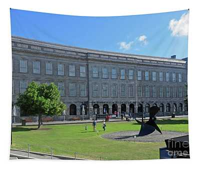 Home Of The Book Of Kells Tapestry