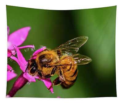 Honey Bee Tapestry