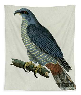 Hook-billed Kites, 1830 Tinted Engraving For Complete Works Of French Naturalist Comte De Buffon - 2 Tapestry