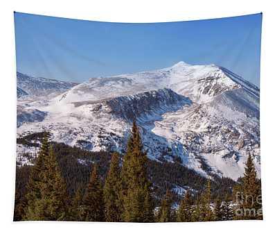 Hoosier Pass Tapestry
