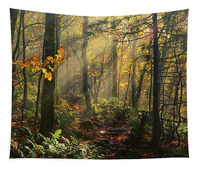 Horizontal Rays Of Sun After A Storm Tapestry