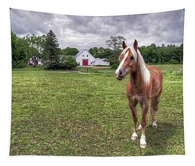 Horse In Pasture Tapestry